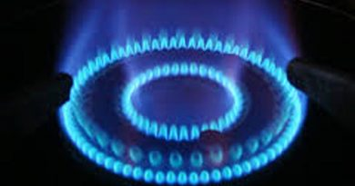 Saves cooking gas