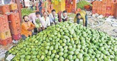 gaddi annaram fruit market
