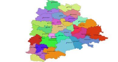 లాక్డౌన్ పొగిడిస్తూ తెలంగాణ ప్రభుత్వం జీవో జారీ