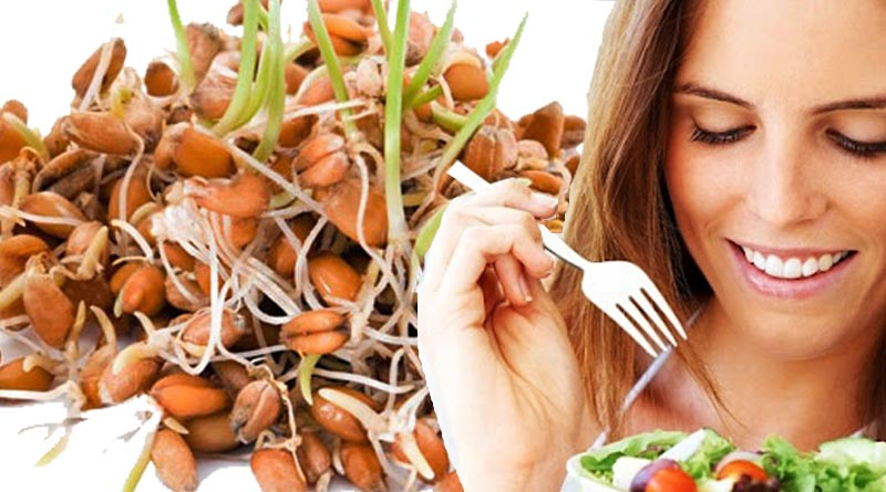 proteins and vitamins in Sprouted peanuts